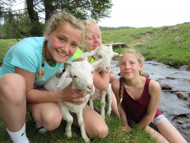 jentene med geiter